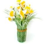 Ikebana Narcis 474