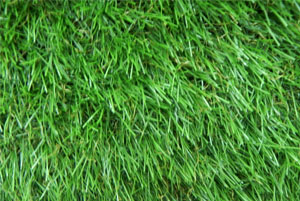 ECO BAHAR GRASS CARPET 29mm