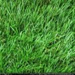 ECO BAHAR GRASS CARPET 29mm